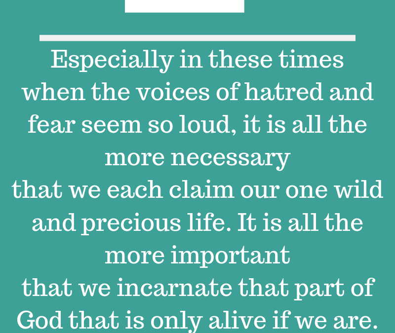 """Especially in these times when the voices of hatred and fear seem so loud, it is all the more necessary that we each claim our wild and precious life. It is all the more important that we incarnate that part of God that is only alive if we are."" - Rev. Rebecca Voelkel"