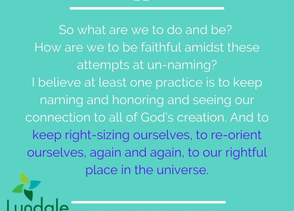 Holy Groundedness: Right-Sizing as Connection with Creation